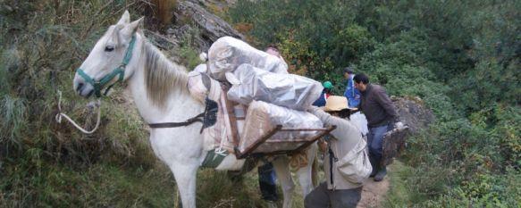 Retiran más de una tonelada de basura del Tajo del Abanico, Las labores de limpieza, en las que participaron medio centenar de voluntarios, se centraron principalmente en el arroyo de Sijuela, 22 Oct 2012 - 20:02