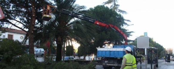 Comienzan las obras de remodelación de la avenida de Málaga, Cuentan con un presupuesto de 261.000 euros y afectarán al tramo comprendido entre el Bar Los Ángeles y la avenida Serranía, 13 Nov 2012 - 14:22