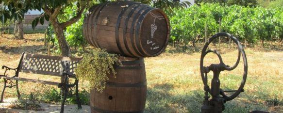 Agricultura pretende mejorar los accesos a las explotaciones vitivinícolas de Ronda, Recientemente se ha mantenido un encuentro con la Junta de Andalucía para analizar este tema, 07 Feb 2013 - 16:52