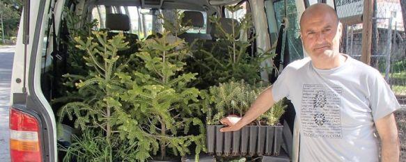 El Ayuntamiento plantará casi 300 pinsapos en diferentes espacios verdes de la ciudad, Los ejemplares han sido cedidos por la Consejería de Medio Ambiente de la Junta de Andalucía, 16 Apr 2013 - 11:37