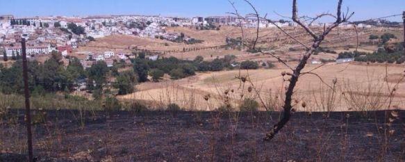 Arden dos hectáreas de pasto en un incendio en la barriada de Padre Jesús, La quema de restos de poda fue el origen del siniestro, que quedó extinguido pasadas las dos de la tarde, 08 Aug 2013 - 18:20