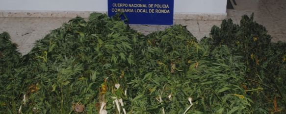 La Policía detiene a dos personas en Las Peñas en una operación antidroga, Otras cinco personas, dos de ellas menores de edad, han resultado detenidas en Serrato tras cometer hurtos en el interior de vehículos, 04 Sep 2013 - 12:05