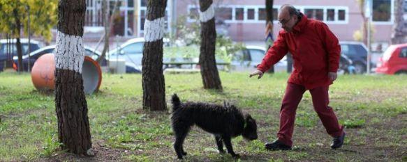 Inauguran en El Fuerte el polémico proyecto del parque canino, Es el primero de estas características en Ronda y ha supuesto una inversión de 9.000 euros, 26 Feb 2014 - 19:11