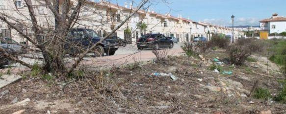 El Ayuntamiento de Ronda terminará la urbanización Arenal 2000 con 500.000 euros, El Consistorio ejecutará el aval de la empresa constructora tras años de quejas de los vecinos que piden la finalización de las obras, 05 Mar 2014 - 19:50