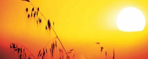 Una ola de calor dejará a partir de mañana temperaturas de hasta 36 grados en Ronda , El INFOCA insta a los ciudadanos a extremar la precaución entre mañana miércoles y el próximo viernes , 15 Jul 2014 - 19:43