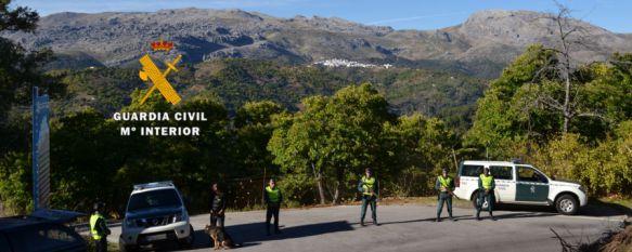 Detienen a cinco personas por el robo de más de una tonelada de castañas en la Serranía de Ronda, Los acusados se encontraban en Igualeja, Pujerra, Cartajima, Parauta y Faraján, 15 Nov 2016 - 19:06