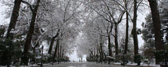 Ronda vuelve a la normalidad después de la mayor nevada desde 1962, La Consejería de Medio Ambiente ha activado el nivel rojo en el Parque Natural Sierra de las Nieves, por lo que se han cerrado los accesos, 20 Jan 2017 - 10:49