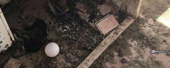 Vecinos de La Dehesa denuncian el hacinamiento de varios perros en una vivienda, Uno de ellos murió el pasado viernes y continúa en el patio, en avanzado estado de descomposición y desprendiendo un fuerte olor , 30 Mar 2017 - 13:46