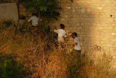 Tres menores de edad, anoche en los matorrales de las cornisas del Tajo // Juan Manuel Vega
