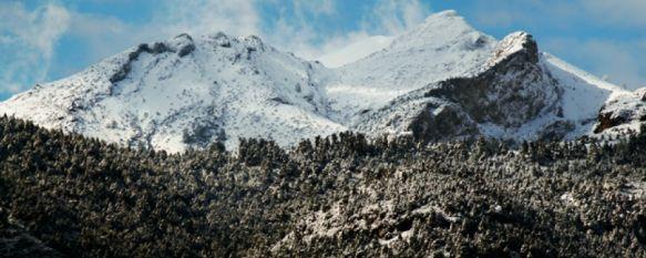 La Sierra de las Nieves se convertirá en el decimosexto parque nacional , La propuesta debe pasar ahora por las Cortes Generales para la creación definitiva, 09 Feb 2018 - 19:23