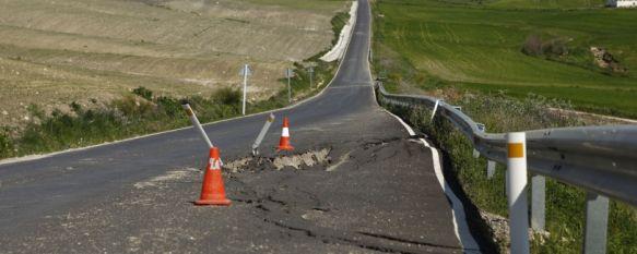 Una imagen muy habitual en cualquier carretera de la Serranía de Ronda  // CharryTV