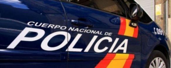 La Policía Nacional desmantela una plantación de marihuana en una finca rural de Ronda