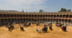 Imagen del Concurso-Exhibición de Enganches en la plaza de toros de Ronda  // CharryTV