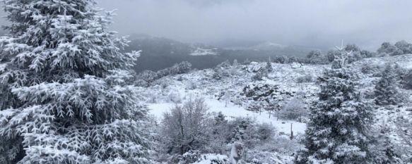 Una gran capa de nieve cubre el parque natural de Sierra de las Nieves. // José Carlos Orozco