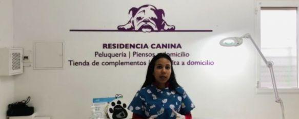 Clínica Veterinaria Vázquez ofrece al Hospital Comarcal sus dispositivos respiradores, Desde este centro alertan del aumento de abandonos de mascotas por la falsa creencia de que estos puedan transmitir el Covid-19, 19 Mar 2020 - 18:53