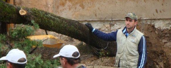 El mal tiempo provoca varias incidencias en la ciudad, La Delegada de Cultura, Pepa Becerra, resulta herida leve tras la caída de un ciprés en el Convento de Santo Domingo., 09 Nov 2010 - 21:23