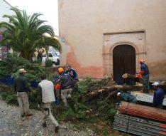 Operarios municipales retirando las ramas del árbol. // CharryTV