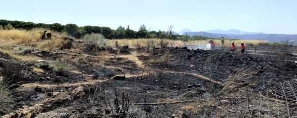 Infoca y Bomberos controlan un incendio en una de las entradas a la barriada de La Dehesa