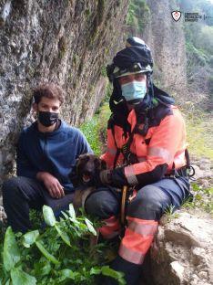Un zarzal amortiguó la caída del animal, que se precipitó 20 metros por una cornisa. // Consorcio Provincial de Bomberos