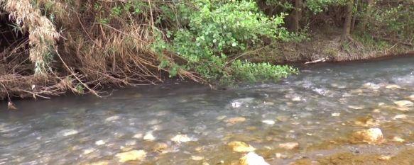 En cada cuenca se harán unos muestreos de biodiversidad fluvial sobre sus microrganismos,  macroinvertebrados y peces. // Grupo de Trabajo Valle del Genal