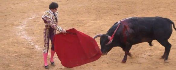 El novillero Pablo Paéz indulta al bravo Bribón en Sanlúcar de Barrameda, El joven rondeño culminó una extraordinaria faena en la que cortó dos orejas y rabo simbólico en la primera cita del Circuito de Novilladas de Andalucía , 31 May 2021 - 10:49