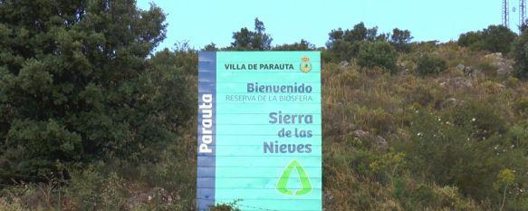 La Serranía de Ronda: un espacio natural que se sale de la norma, La existencia de diferentes parques naturales y las políticas…, 09 Jun 2021 - 18:17