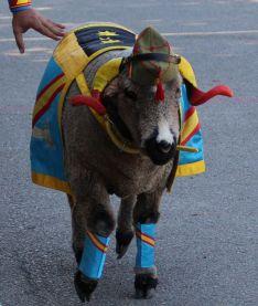 El carnero de la XBandera, durante el desfile.  // Manolo Guerrero