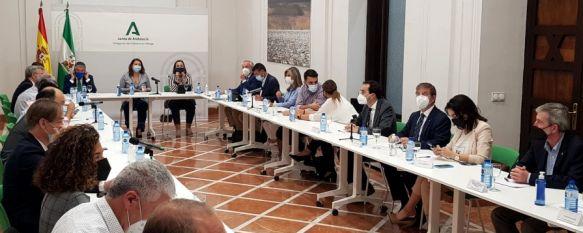 La Junta invertirá 4,6 millones de euros en obras de emergencia del incendio de Sierra Bermeja, La constitución del foro de participación social y del comité…, 15 Oct 2021 - 16:16