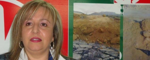 El P.A. denuncia supuestas irregularidades en la carretera de acceso al Nuevo Hospital, Según la líder andalucista, la irregularidad radica en la utilización de la vieja calzada como base de la nueva vía., 11 Nov 2010 - 14:26