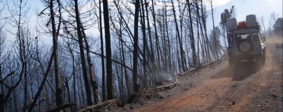 Controlado el incendio forestal de Pujerra, La medición perimetral ha determinado que la superficie afectada por el siniestro es de alrededor de 750 hectáreas, 06 Feb 2012 - 20:48