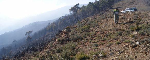 El Infoca da por extinguido el incendio forestal de la Serranía de Ronda, El Seprona está realizando informes de los trabajadores de la castaña, ya que la principal hipótesis del siniestro apunta a la quema de rastrojos, 07 Feb 2012 - 21:30