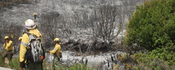 Un incendio entre Cortes de la Frontera y Jimera de Líbar calcina 75 hectáreas , Cuatro trabajadores del Infoca, hospitalizados por inhalación de humo en las tareas de extinción, 21 Aug 2012 - 17:08